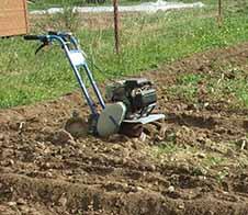 Нужно ли перекапывать огород осенью.
